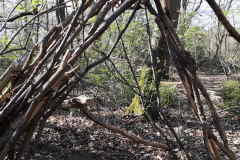 Waldtreff-05-21-2