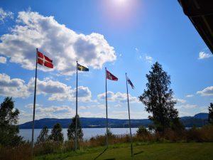 Verschiedene Flaggen an Masten im Wind.