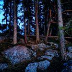 Felsen und Bäume auf einer Insel.