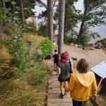 Junge Menschen beim Geocaching im Wald.