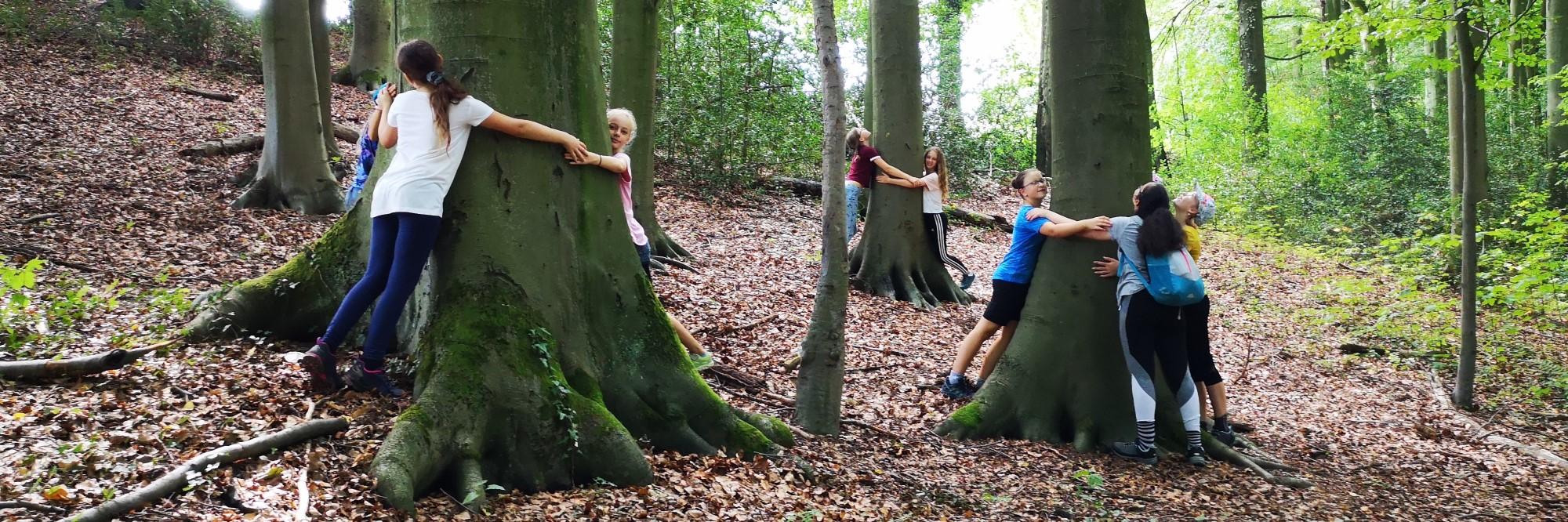 Mädchengruppen umarmen große Bäume